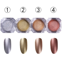 (263,00 ?/100g) Nailart - Chrome Pigment Mirror Puder...